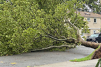 AUG 04 Tropical Storm Isiasis Causes Damage And Loss Of Power On The East Coast