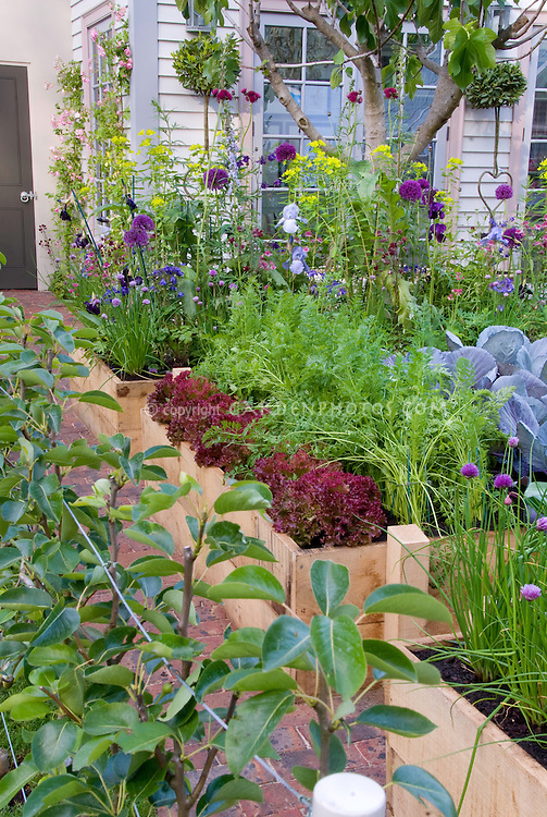 Edible landscaping backyard vegetable flower garden for Ornamental trees for flower beds
