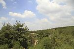 Israel, Shephelah, a view of Masua forest