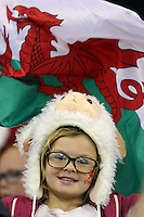 Pictured: A young welsh rugby fan with a flag. Saturday 15 November 2014<br />
