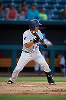 Jacksonville Jumbo Shrimp Santiago Chavez (13) squares to bunt during a Southern League game against the Mobile BayBears on May 28, 2019 at Baseball Grounds of Jacksonville in Jacksonville, Florida.  Mobile defeated Jacksonville 2-1.  (Mike Janes/Four Seam Images)