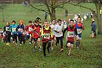 2014-12-14 Holly Run 11 TRo u11B