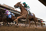 DEL MAR, CA - NOVEMBER 03: Stellar Wind #2, ridden by Victor Espinoza, gets through the pack on Day 1 of the 2017 Breeders' Cup World Championships at Del Mar Thoroughbred Club on November 3, 2017 in Del Mar, California. (Photo by Alex Evers/Eclipse Sportswire/Breeders Cup)