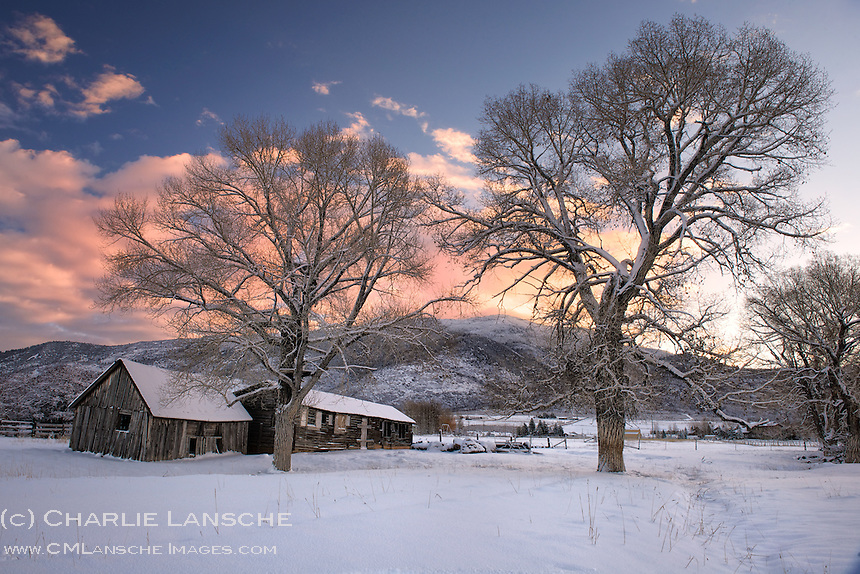 Early Winter Morning. Winter is definitely settling into the valley while snow continues to pile up in the surrounding mountains. I had a very different landscape in mind this morning but couldn't resist stopping to photograph this scene at a nearby dairy farm along the western flank of the Uinta Mountains. This property has been utilized by the same family for more than 100 years. I think the owner is getting used to me wandering around his outbuildings at odd hours. His cattle, not so much. Summit County, Utah. November 17, 2013.