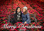 ColorPoint Christmas Sessions, Saturday Nov. 10, 2018  in Paris, Ky. Photo by Mark Mahan