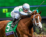 November 2, 2018: Bulletin #5, ridden by Javier Castellano, wins the Juvenile Turf Sprint on Breeders' Cup World Championship Friday at Churchill Downs on November 2, 2018 in Louisville, Kentucky. Eric Patterson/Eclipse Sportswire/CSM