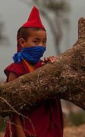 Portrait of a student Buddhist Monk,  Sikkim, India