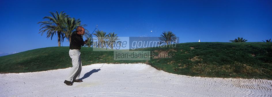 Europe/Espagne/Iles Canaries/Tenerife/Guia de Isora: Hotel Abama le Golf