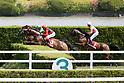 Horse Racing: Kyoto High-Jump at Kyoto Racecourse