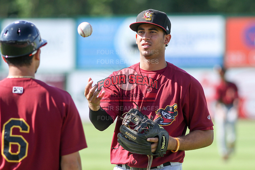 Quad Cities River Bandits infielder Luis Reynoso (3) talks with teammate Alex Hernandez (6) prior to a Midwest League game against the Wisconsin Timber Rattlers on July 17th, 2015 at Fox Cities Stadium in Appleton, Wisconsin. Quad Cities defeated Wisconsin 4-2. (Brad Krause/Four Seam Images)