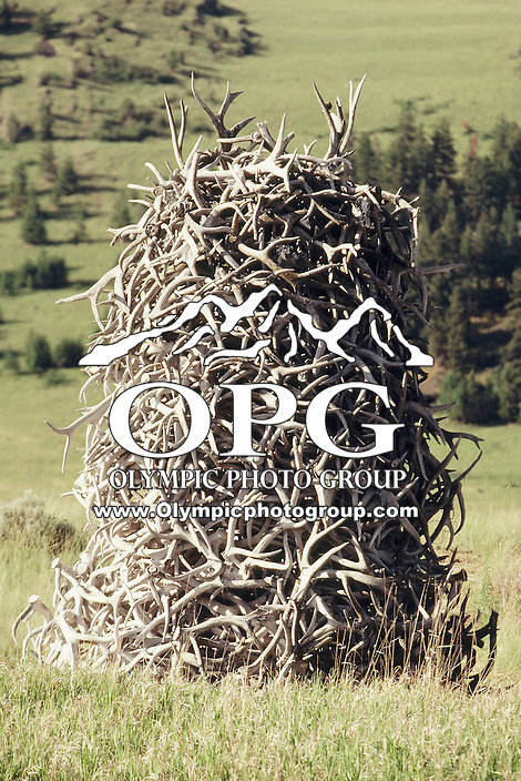 A 20 feet high stack of antlers sits at the entree way of the National Bison Range Wildlife Complex in Moiese Montana. The range is over a 100 years old with 18,500 acres of range for the animals to call home.