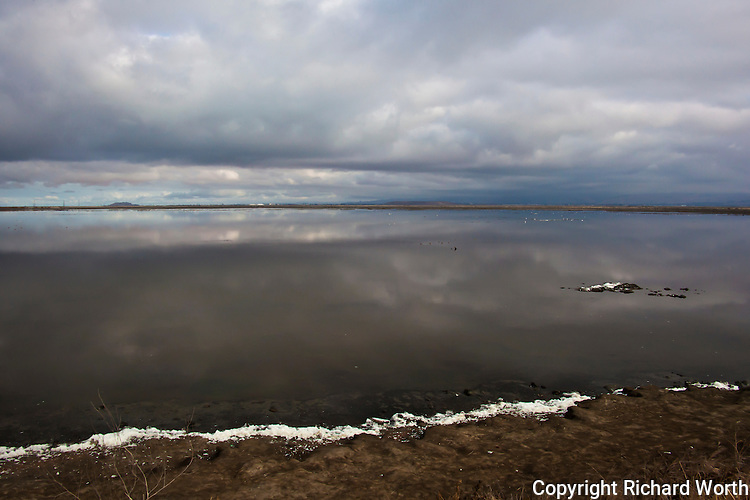 Clouds hover above and reflect below in the restored salt marsh at Alviso, New Chicago Marsh, at the south end of San Francisco Bay near San Jose, California.  The waters are  dotted with gulls, ducks and tiny shorebirds.  Along the shore, white salt looks like <br /> snow, but it's not.