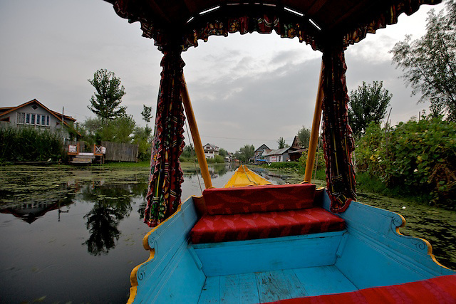 In a Shikara on Dal Lake, Srinigar, Kashmir
