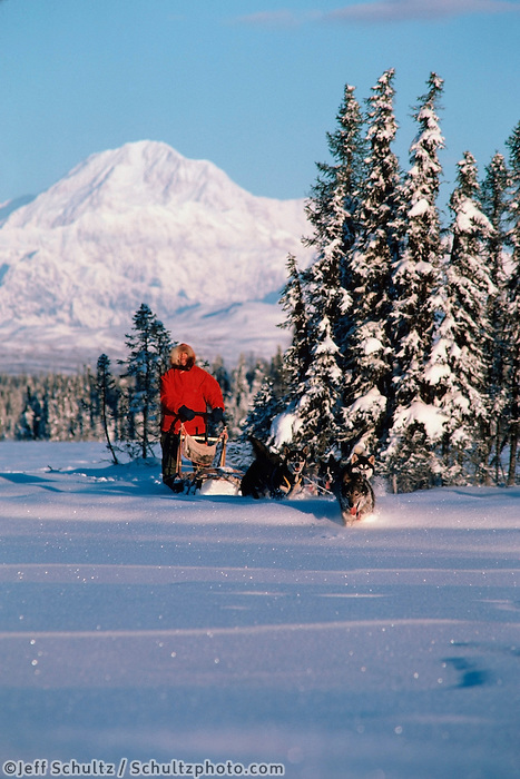 Joe Redington Sr. Dog Mushing Mt Mckinley Alaska Interior Winter