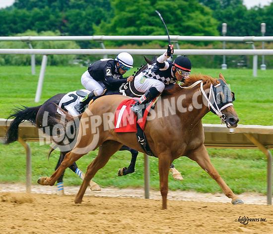 Justforgetaboutit winning at Delaware Park on 7/4/16