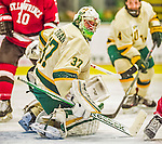 14 December 2013: University of Vermont Catamount Goaltender Brody Hoffman, a Sophomore from Wilkie, Saskatchewan, in third period action against the Saint Lawrence University Saints at Gutterson Fieldhouse in Burlington, Vermont. The Catamounts defeated their former ECAC rivals, 5-1 to notch their 5th straight win in NCAA non-divisional play. Mandatory Credit: Ed Wolfstein Photo *** RAW (NEF) Image File Available ***