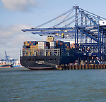 Container ship MSC Bettina and cranes at  Port of Felixstowe, Suffolk, England
