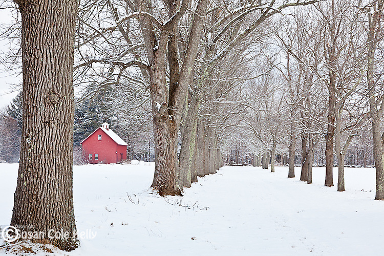 Winter at Appleton Farms in Ipswich, Massachusetts, USA
