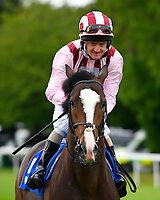 Pitchcombe ridden by Liam Keniry  goes down to the star of The First Carlton Novice Auction Stakes Div 1 during Evening Racing at Salisbury Racecourse on 11th June 2019