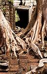 Temple Ruins 02 - Preah Palilay Temple, Angkor Thom, Cambodia