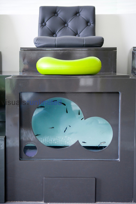 Fish therapy using Doctor Fish (Garra ruga) to clean dead skin cells originated in Turkey. The procedure may also be used<br />