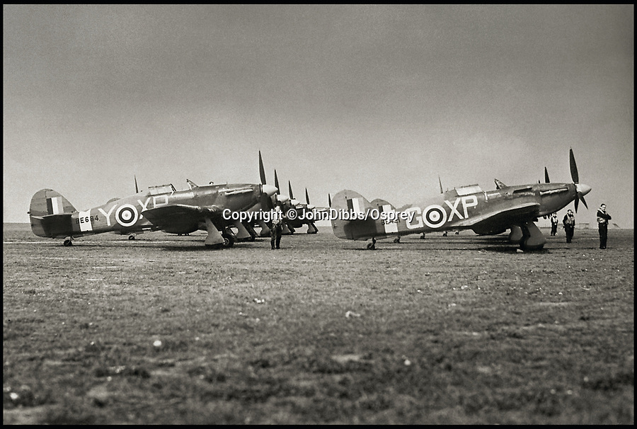 BNPS.co.uk (01202 558833)<br /> Pic: JohnDibbs/Osprey/BNPS<br /> <br /> 174 Hurricane Sqn at Manston in 1942.<br /> <br /> Last of the Few - A photographer's stunning new book is a tribute to the last Hawker Hurricane's - the true workhorse of the Battle of Britain.<br /> <br /> Only 13 WW2 Hurricanes are still airworthy today, compared to over 60 of their more glamorous counterpart the Spitfire.<br /> <br /> But during the Battle of Britain there were in fact twice as many Hurricane's as Spitfires taking on Hitlers Luftwaffe in the skies over southern England.<br /> <br /> The Hurricane may be viewed as less glamorous than the Spitfire, but these stunning photographs reveal just how majestic it was in full flight.<br /> <br /> Photographer John Dibbs has got up close and personal to the legendary fighter planes in order to capture them like never before.<br /> <br /> His 10 year quest for surviving Hurricanes took him all over the world and he photographed them in England, France, the United States and New Zealand.<br /> <br /> Using the skill and experience of highly experienced RAF and civilian pilots, Mr Dibbs was able to fly to within 15ft of some of the last remaining Hurricanes - with breath-taking results.<br /> <br /> There was a fair degree of skill involved as he took the photos from the canopy of a Second World War trainer aircraft which was travelling at 200mph while confronting wind blast.<br /> <br /> The thrilling photos were taken for an a definitive history of the Hurricane which is told by Mr Dibbs and aviation historians Tony Holmes and Gordon Riley in their new book Hurricane, Hawker's Fighter Legend.