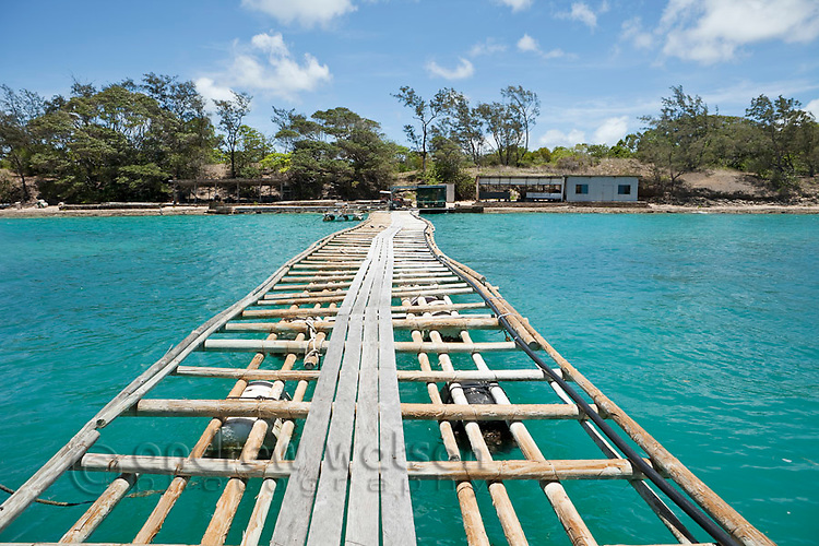 Jetty at Kazu Pearls.  The pearl farm is one of the last in the Torres Strait, growing and harvesting cultured pearls.  Friday Island, Torres Strait Islands, Queensland, Australia