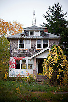 United States: Homes of Detroit
