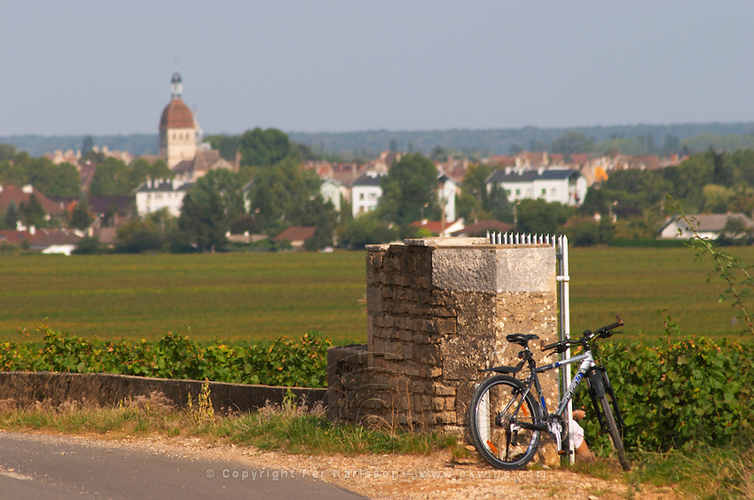 Bicycle in the vineyard. View over Beaune town. Beaune, Cote d'Or, Burgundy, France