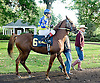 Ayers before The Arabian Claiming Crown at Delaware Park on 10/13/12