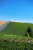 USA, Oregon, Willamette Valley, the road that leads through the vines to Domaine Drouhin Vineyard, with views of Mount Hood in the distance, Dundee