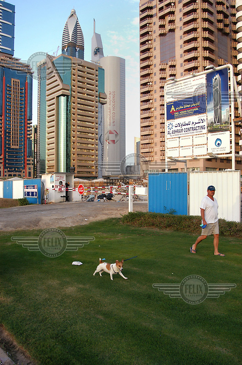 A man walking his dog behind skyscrapers on Sheikh Zayed Road, home to most of Dubai's skyscrapers...