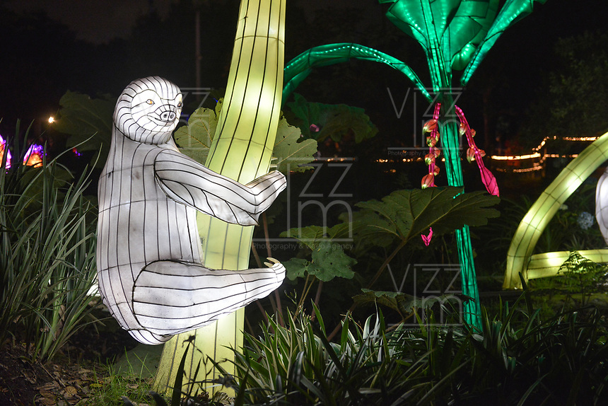 BOGOTA - COLOMBIA, 02-01-2020: En el Jardín Botánico de Bogotá se presenta el Festival Brilla Colombia que llega por primera vez a Bogotá para exhibir 500 esculturas gigantes luminosas, las cuales han sido traídas desde China gracias a una muestra que está presente simultáneamente en París, Dublín y Londres. / In the Botanical Garden of Bogotá, the Brilla Colombia Festival is presented, which comes to Bogotá for the first time to exhibit 500 luminous giant sculptures, which have been brought from China thanks to a sample that is present simultaneously in Paris, Dublin and London. Photo: VizzorImage/ Gabriel Aponte / Staff