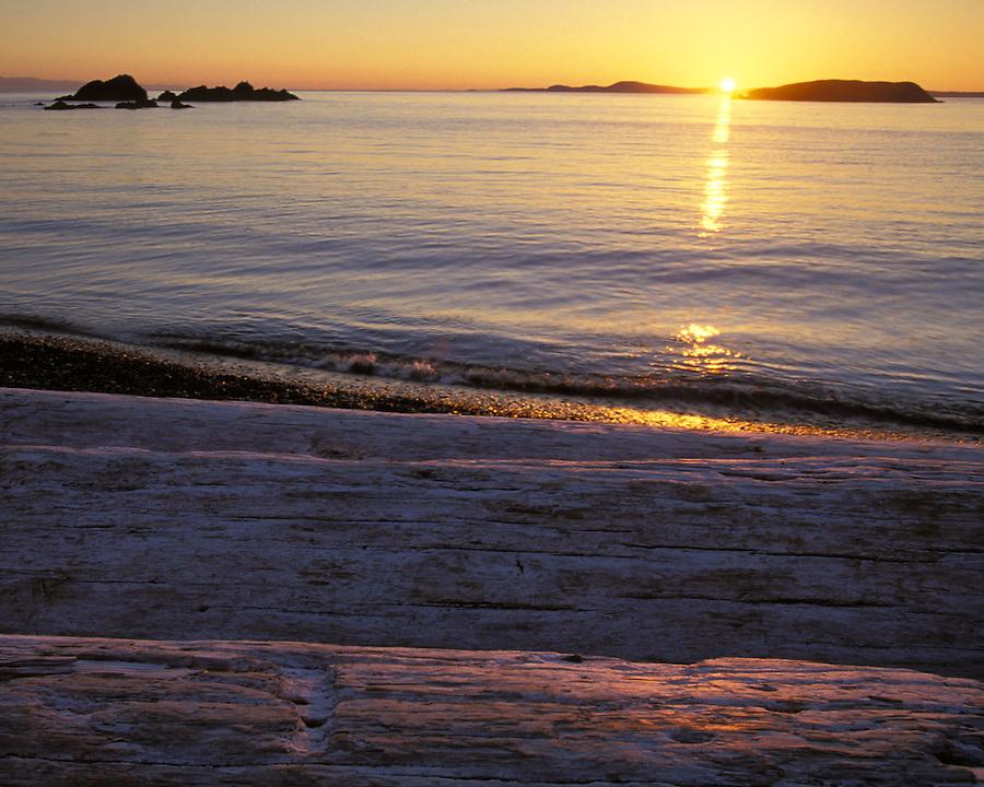 Sun setting over driftwood, Deception Pass State Park, Fidalgo Island, Washington