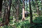 Photo shows Roken Jinja, a shrine in Odate City, Akita Prefecture Japan.  Photographer: Rob Gilhooly