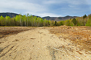 Landing in the area of Unit 33 of the Kanc 7 Timber Harvest project in the area of Forest Road 510 along the Kancamagus Scenic Byway (route 112) in the White Mountains, New Hampshire USA