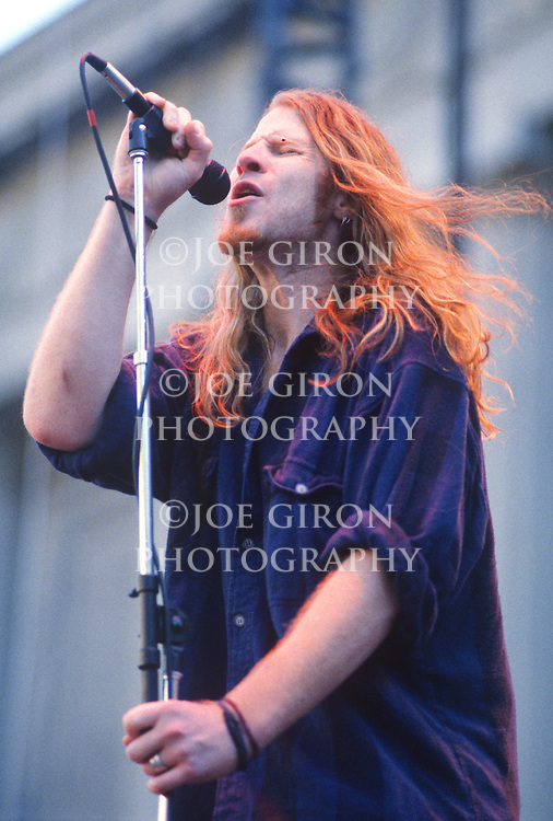 Various portraits & live photographs of the rock band, Screaming Trees