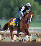 California Chrome (Lucky Pulpit)