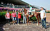 Sand Champ winning at Delaware Park on 7/31/14