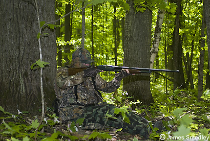 Wild turkey hunter taking aim