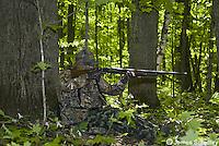 Wild turkey hunter taking aim
