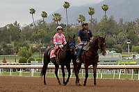 ARCADIA, CA  JUNE 16: Kent Desormeaux and the connections in the winners circle after winning the Summertime Oaks (Grade ll) on June 16, 2018 at Santa Anita Park in Arcadia, CA. (Photo by Casey Phillips/Eclipse Sportswire/Getty Images)