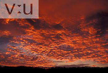 Altocumulus clouds glowing red at sunrise