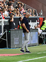 Trainer Alfred Schreuder (TSG 1899 Hoffenheim) - 18.08.2019: Eintracht Frankfurt vs. TSG 1899 Hoffenheim, Commerzbank Arena, 1. Spieltag Saison 2019/20 DISCLAIMER: DFL regulations prohibit any use of photographs as image sequences and/or quasi-video.