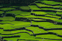 On the road to Bontoc Mountain Province Rice Terraces Philippines