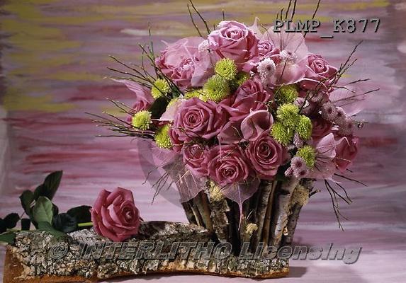 Marek, FLOWERS, BLUMEN, FLORES, photos+++++,PLMPK877,#f#