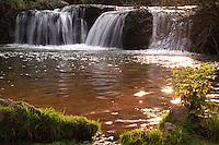 Il fiume Treja da origine alle cascate di Monte Gelato, che si trovano in un'area naturale all'interno del parco Suburbano Valle del Treja..The Monte Gelato waterfalls are situated in a natural park within the Suburban Treja Valley..