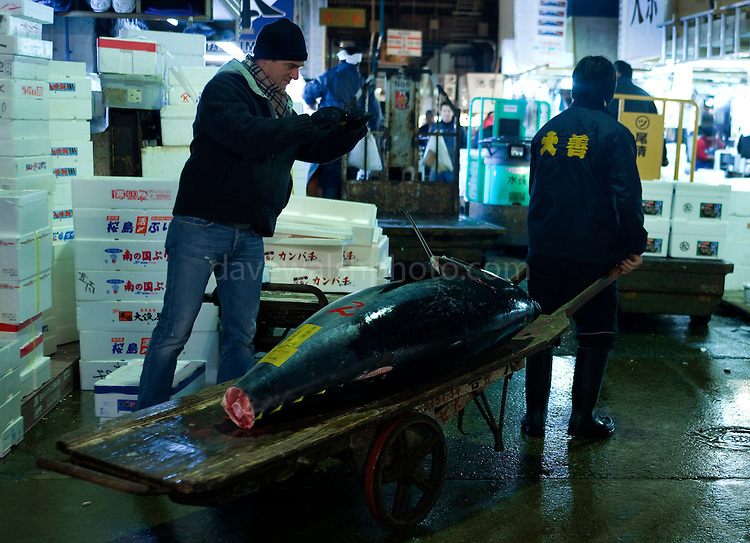 Tourist takes photograph of tuna at Tokyo Tsukiji Fish Market. Tokyo Metropolitan Central Wholesale Market or Tsukiji Fish Market is the largest fish market in the world. On December 15 2008, market authorities closed the auction to visitors for a month, citing safety and  health reasons. Authorities said that tourists were getting in the way of workers and touching the fish. Guards are to be placed at entrances to keep visitors away.