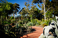 Image Ref: M303<br />