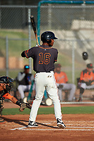 AZL Giants Black Jairo Pomares (16) at bat during an Arizona League game against the AZL Giants Orange on July 19, 2019 at the Giants Baseball Complex in Scottsdale, Arizona. The AZL Giants Black defeated the AZL Giants Orange 8-5. (Zachary Lucy/Four Seam Images)